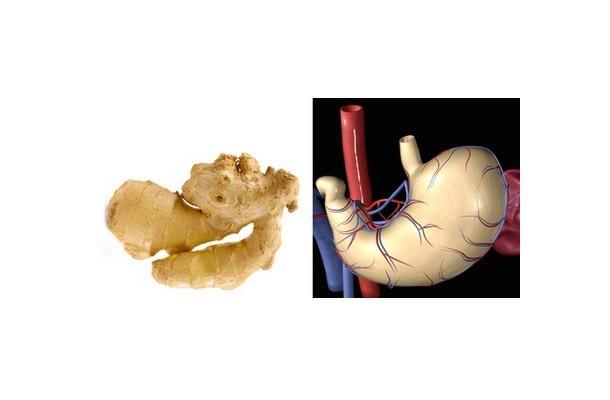 Benzediği organa iyi geldiğini kanıtlayan 10 yiyecek 1