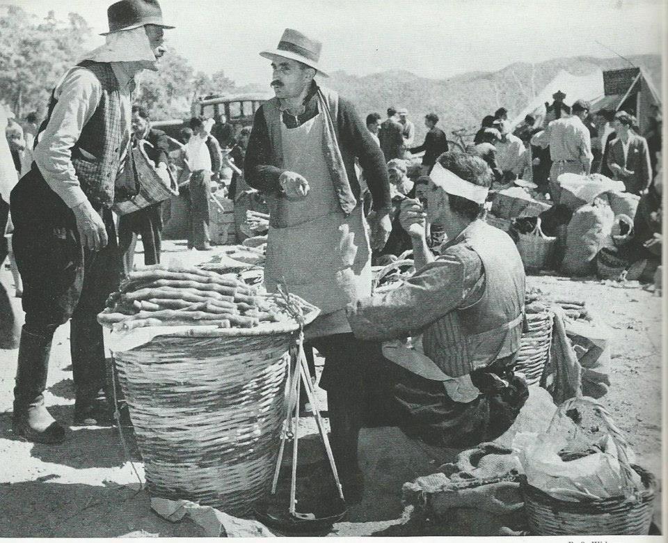 1928'İN KIBRIS'I 119