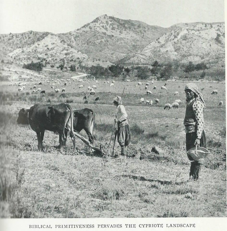 1928'İN KIBRIS'I 15