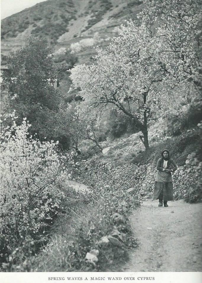 1928'İN KIBRIS'I 33