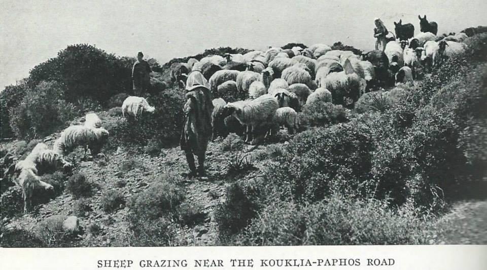 1928'İN KIBRIS'I 40