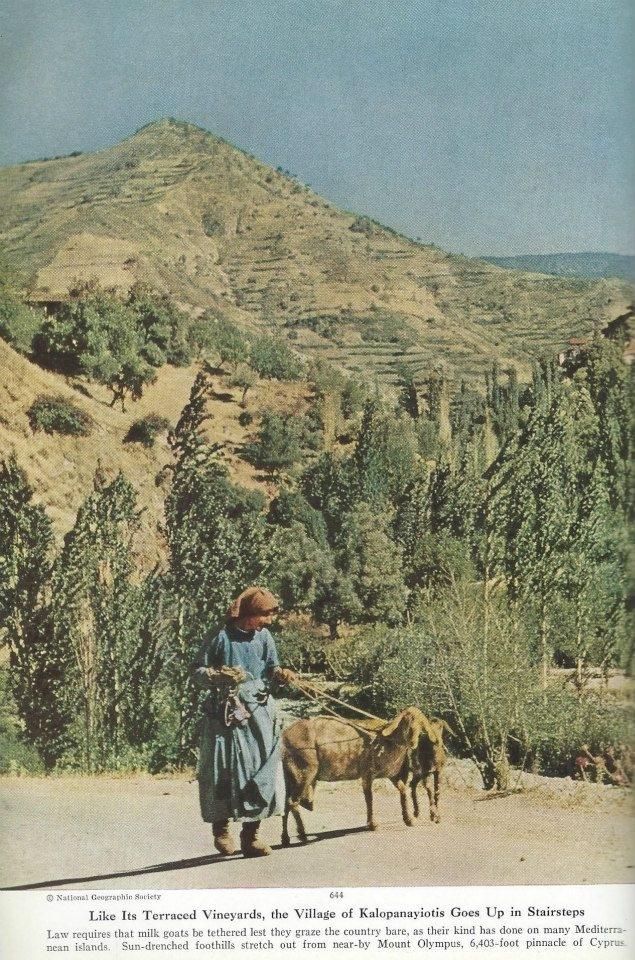 1928'İN KIBRIS'I 89