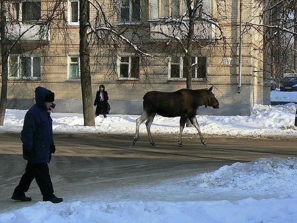 Rusların gizli şehri böyle görüntülendi... 26