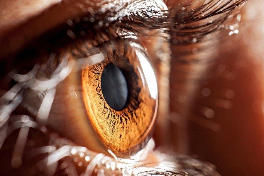 Göz rengi karakteri etkiler mi? 4