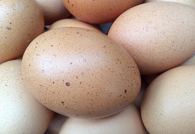 Yediğimiz yumurtalar kanser mi yapıyor? 1