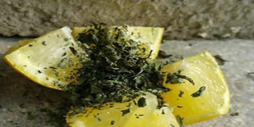 Karıncalardan anında kurtaran etkili yöntem!