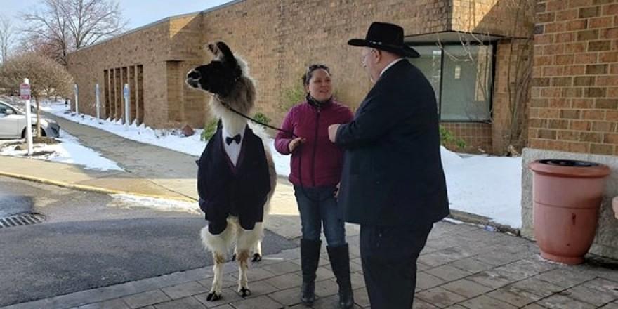 Böyle düğün sürprizi görülmedi! Kız kardeşinin düğününü
