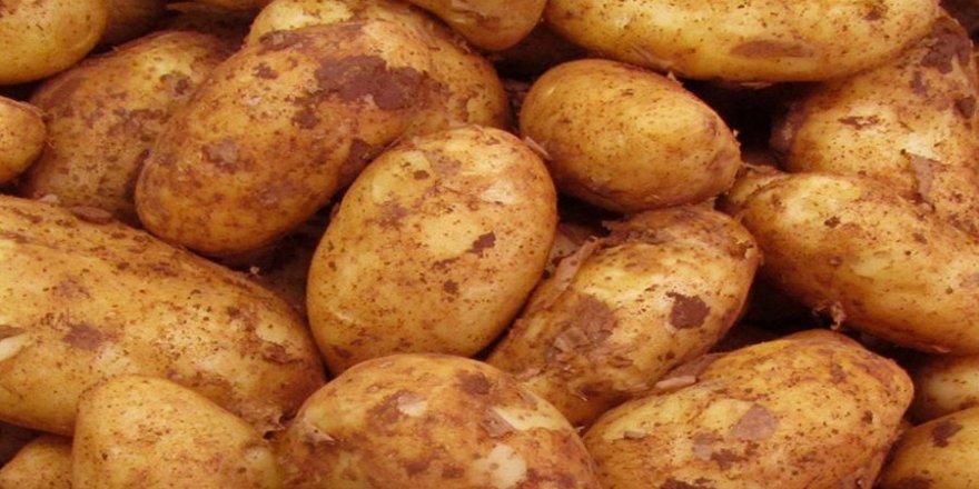 Patates ithali iddialarına yalanlama