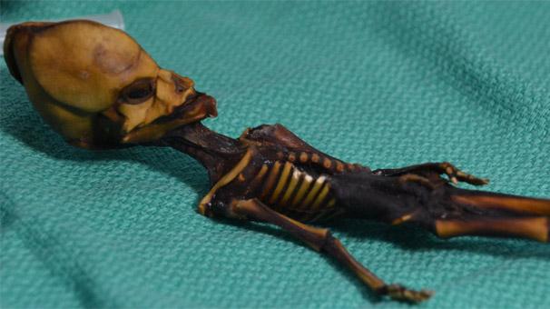 'Uzaylı' sanılan 15 cm'lik mumyanın trajik hikayesi