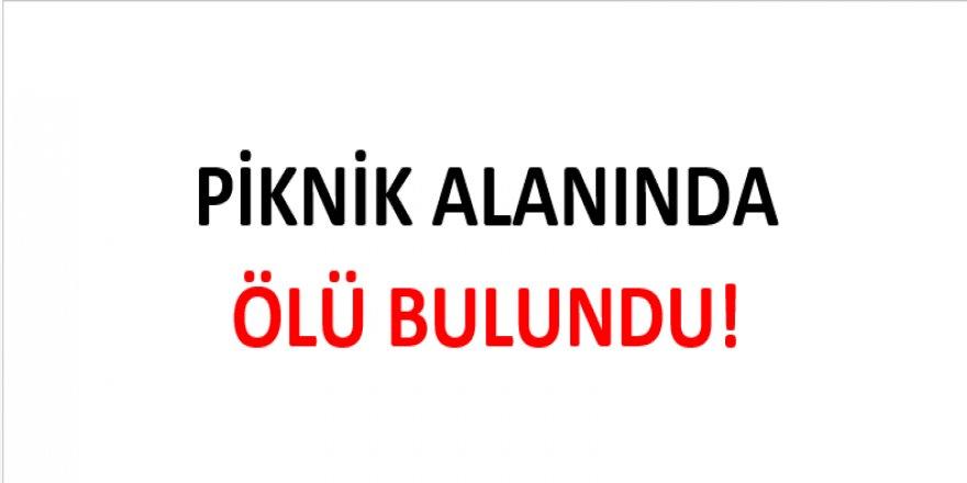 PİKNİK ALANINDA ÖLÜ BULUNDU!