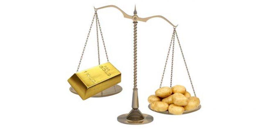 Patates Altınla Yarışa Girdi