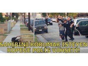 SAHİBİNİ KORUMAK İSTEYEN KÖPEĞE POLİS VAHŞETİ!