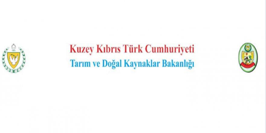 AFLATOKSİN SEMİNERİ...