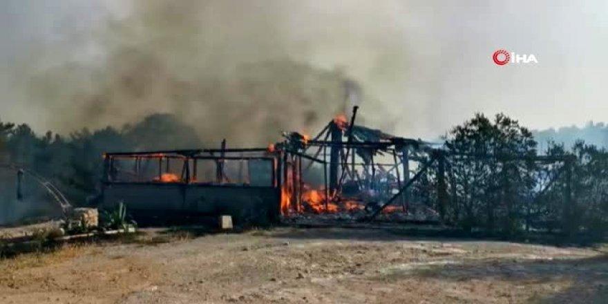 Yangın kontrol altına alınamadı- Polis halktan yardım istedi