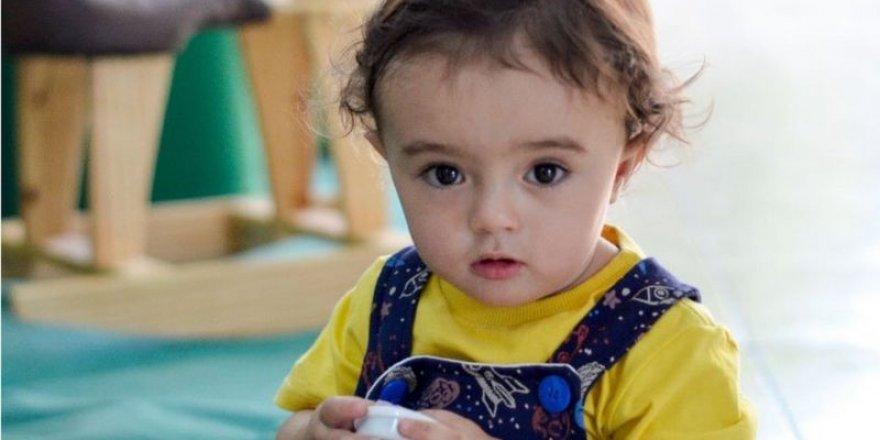 Brezilya'da neden yüzlerce bebek hayatını kaybetti?