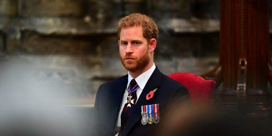 Prens Harry'den ipleri tamamen koparacak sözler: Hayvanat bahçesinde yaşamak gibi