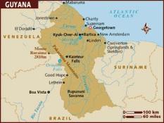 GUYANA'DA KÜÇÜK BİR UÇAK DÜŞTÜ: 2 ÖLÜ!
