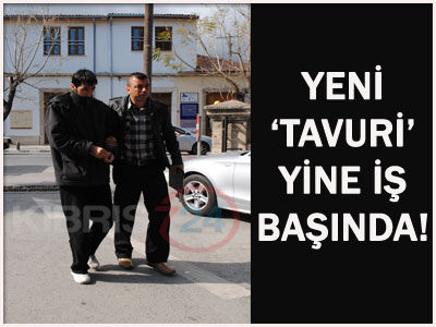 YENİ 'TAVURİ' YİNE İŞBAŞINDA!