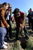CUMHURİYET MECLİSİ ORMANI'NA 250 FISTIK ÇAMI DİKİLDİ