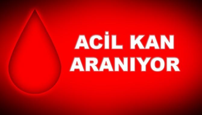 LEFKOŞA DR. BURHAN NALBANTOĞLU HASTANESİ'NDE ACİL!