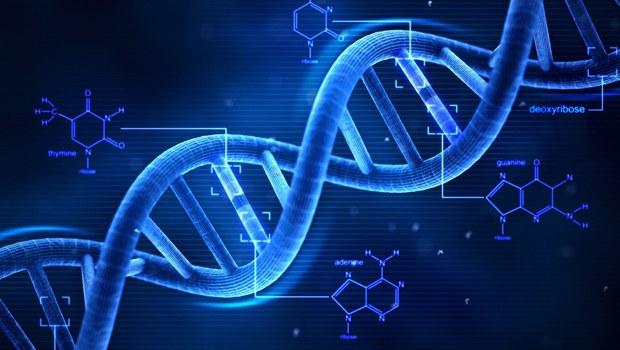 EŞCİNSEL DNA BULUNDU!