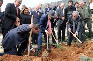"""RAUF R. DENKTAŞ GENÇLİK ORMANI""NDA FİDAN DİKİMİ"