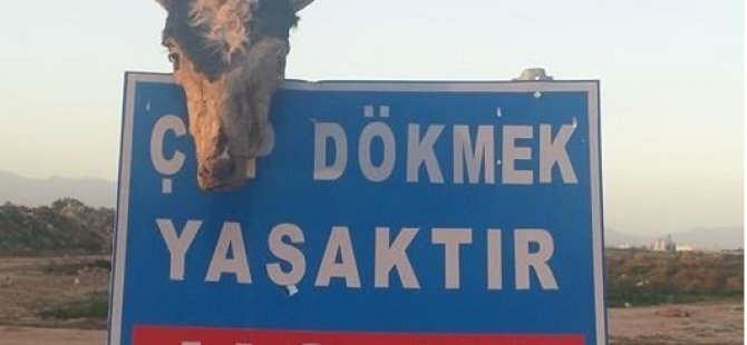 KKTC'DE BİR GARİP LEVHA...