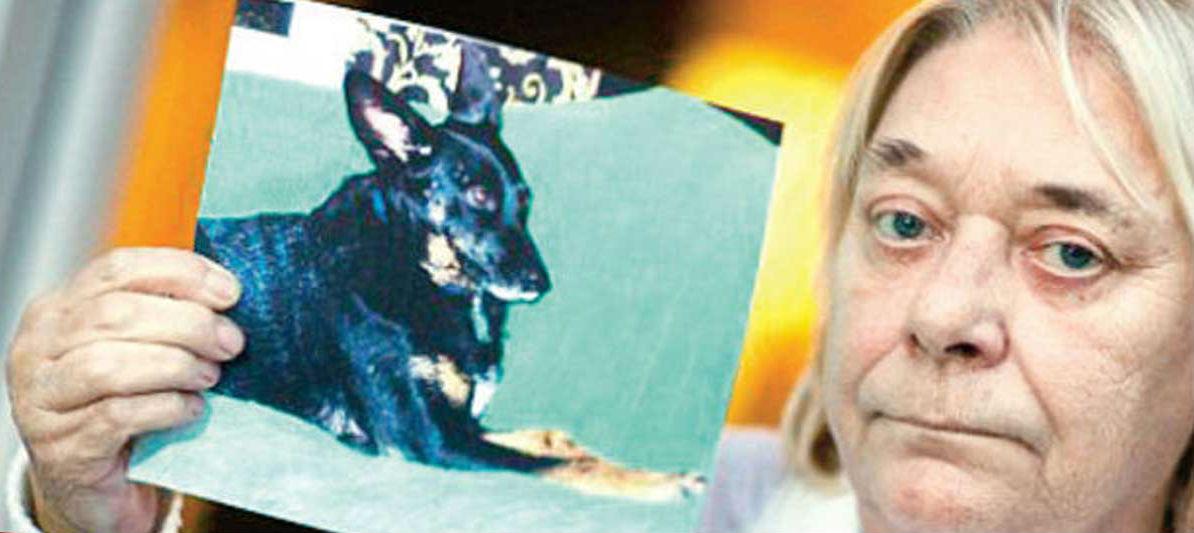 Köpeğini kanser etti...