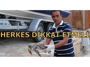 HERKES DİKKAT ETMELİ!