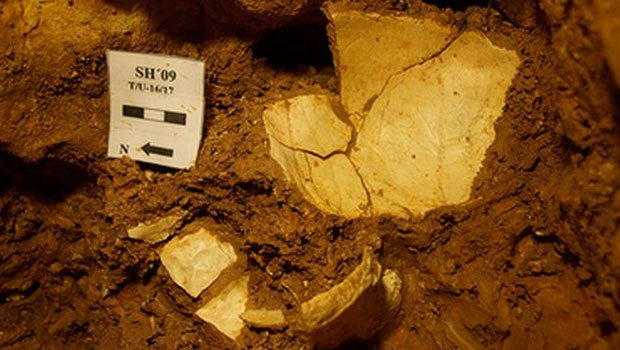 430 bin yıllık sır: Başına aldığı darbeyle...