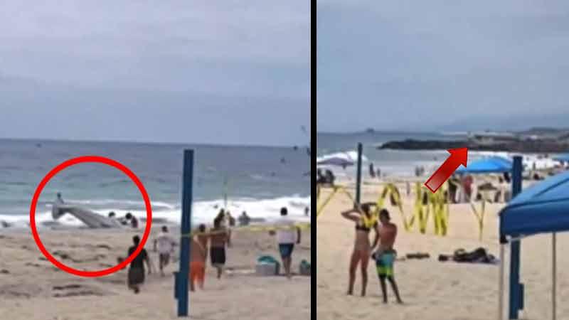 Uçak plaja çakıldı