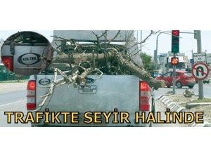 TRAFİKTE SEYİR HALİNDE...