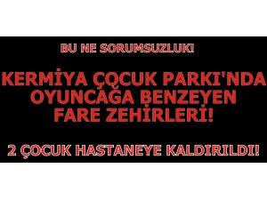KERMİYA PARKI'NDA OYUNCAĞA BENZEYEN FARE ZEHİRLERİ! İKİ ÇOCUK HASTANEYE KALDIRILDI!