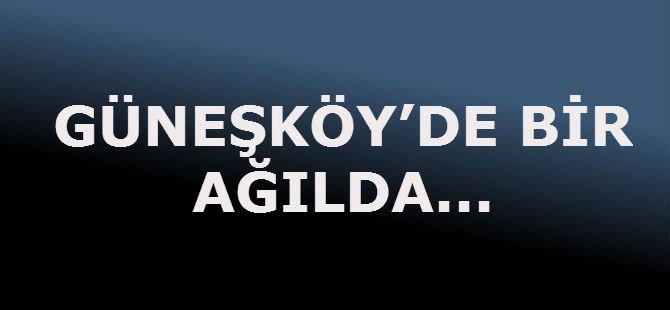 GÜNEŞKÖY'DE BİR AĞILDA,,