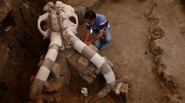Kanalizasyon işçileri tesadüfen buldu!