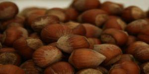 """İtalya'nın """"en tehlikeli gıdalar"""" listesinde en çok Türk ürünü var"""