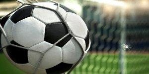 K-Pet liglerinde 17.hafta tamamlandı