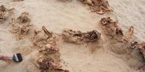 Kalpleri çıkarılarak kurban edilen 140 çocuk bulundu