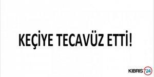 KEÇİYE TECAVÜZ ETTİ!