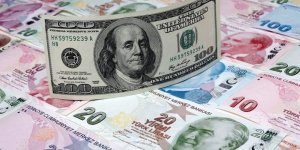 Commerzbank ekonomisti Ghose'tan Dolar/TL tahmini