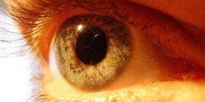 Sarı nokta hastalığında beslenmeye dikkat