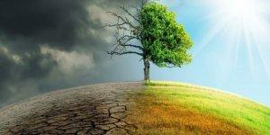 Avrupa Merkez Bankası'ndan bankalara iklim krizi uyarısı