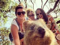Selfie'de yeni trend