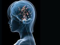 Beynin cinsiyeti değiştirildi