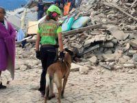 İtalya'da 6.2 Büyüklüğünde Deprem