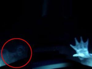 'Deniz kızı görüntülendi' iddiası gerçek mi?